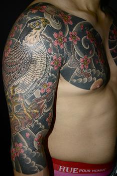 鷹と桜.JPG